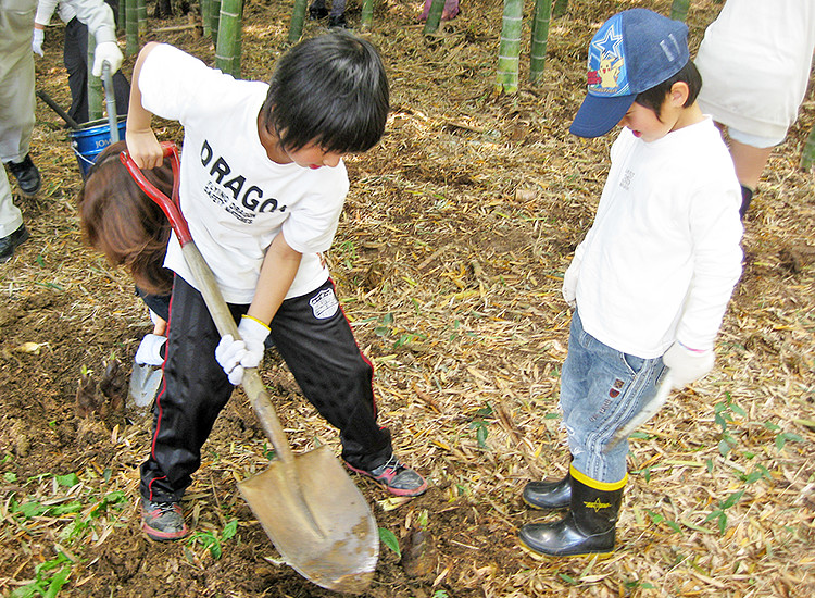 タケノコ掘りの写真